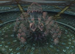 차원의 거미.png