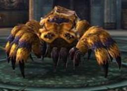 고대 거미.jpg