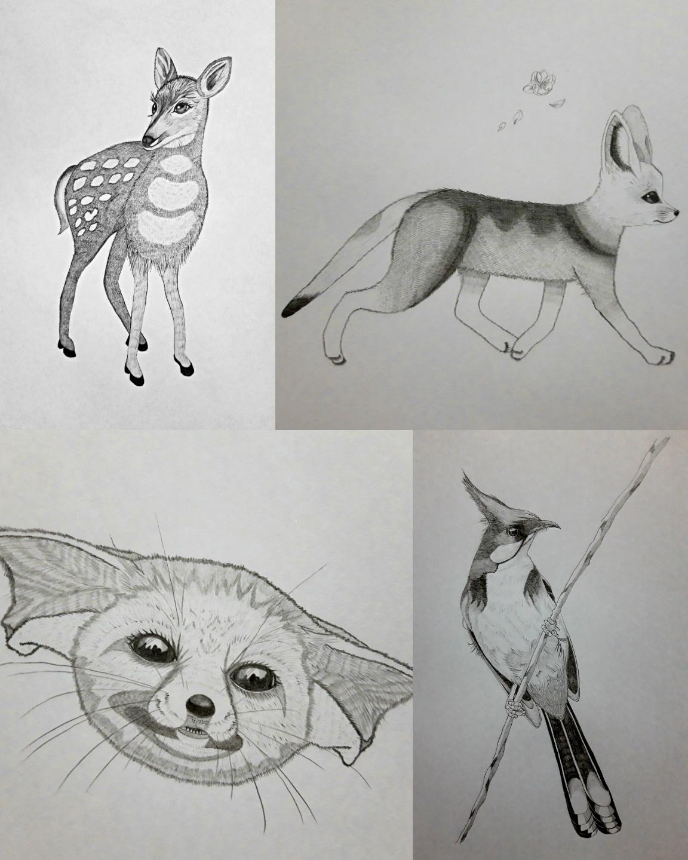 동물그림.jpg